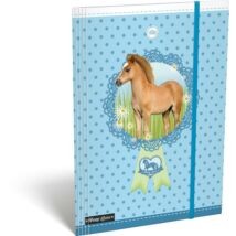 GUMIS DOSSZIÉ A4 LIZZY15 Pony Love**