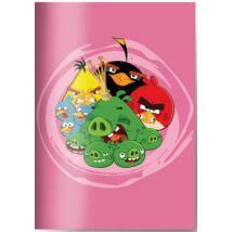 FÜZET A5 SB Angry Birds szótár 31-32