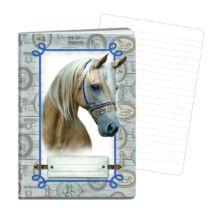 FÜZET A4 ARGUS vonalas 40l kislány/fehér ló, railway  1582-0260-61-62 (fehér ló, 151462120)