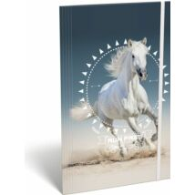 GUMIS DOSSZIÉ A4 LIZZY  Kis bagoly (Horse, 20820043)