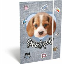 GUMIS DOSSZIÉ A5 LIZZY19 PET (Good Pup, 19670614)