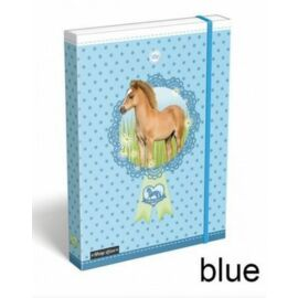 FÜZETBOX A4 LIZZY15 Pony Love**
