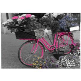 IRATTASAK A4 Panta Plast PP mintás cipzáras (Bike, INP410006344)