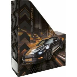 IRATPAPUCS A4 LIZZY21 FORD Shelby GT-H
