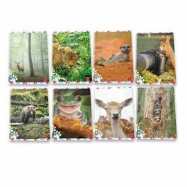 *53941 FÜZET A4 PIGNA kockás 50lap Animal cute&Funny