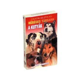 KÁRTYA kvartett Földünk állatvilága KVIZ (A kutyák)
