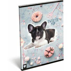 FÜZET A4 LIZZY kockás Kis bagoly vegyes minta (Sweety Pup, 20818645)