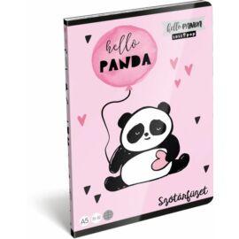 FÜZET A5 LIZZY szótár 31-32 Lollipop20 (Hello Panda, 20757049)