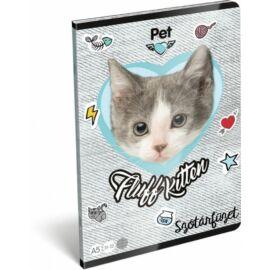 FÜZET A5 LIZZY szótár PET 31-32 (Fluff Kitten, 19680513)