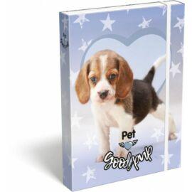 FÜZETBOX A5 LIZZY Pet Good Pup