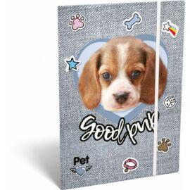 GUMIS DOSSZIÉ A5 LIZZY19 PET (Good Pup, 19670614)