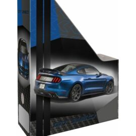 IRATPAPUCS LIZZY A4  FORD Mustang Blue