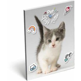 NOTESZ A7 papírfedelű LIZZY19 Pet (Fluff Kitten, 19683013)