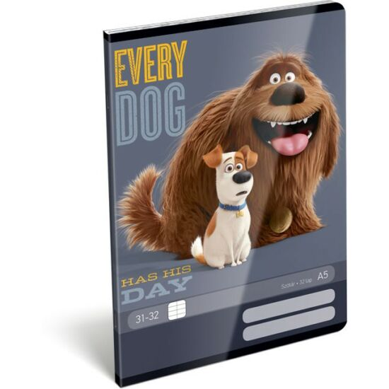 FÜZET A5 LIZZY szótár Disney Avengers,Star Wars ,Planes ,Cars