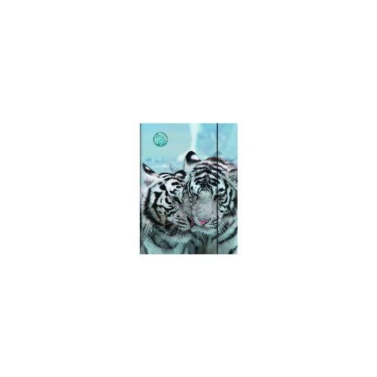 GUMIS DOSSZIÉ A4 Brunnen Fans of Earth tigris